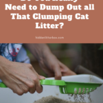 Do You Need to Dump Out Clumping Cat Litter to Clean the Box? Read This!