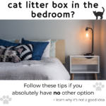 Can You Keep a Cat Litter Box in Your Bedroom? Why It's Not the Best Idea