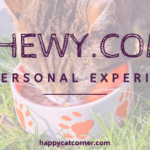 Chewy.com: My Experience and Totally Honest Review!