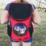 The Best Cat Carrier Backpacks - My Top 8 Choices