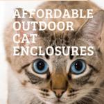 Affordable Outdoor Cat Enclosures